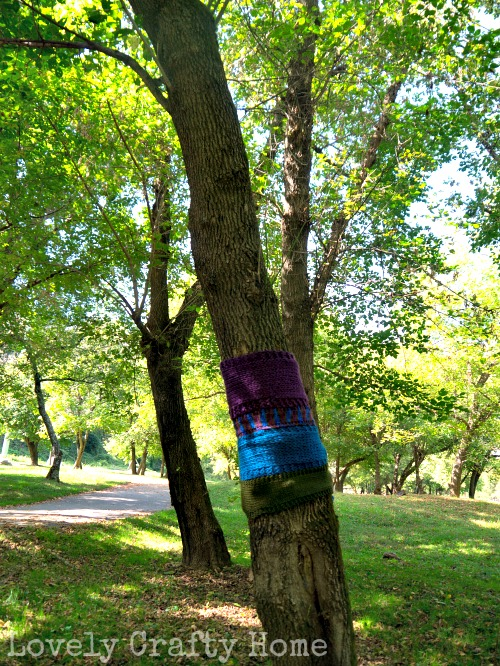 yarn bombed tree 2